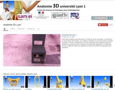 L' #anatomie en 3D : les vidéos gratuites de l'Université Lyon 1 | Bertin Ngninteguia | Scoop.it