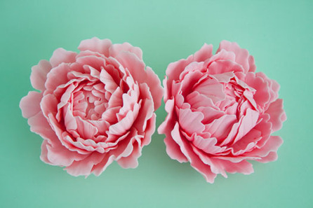 How to make a gum paste peony (part 1) • CakeJournal.com | Cake Decorating | Scoop.it
