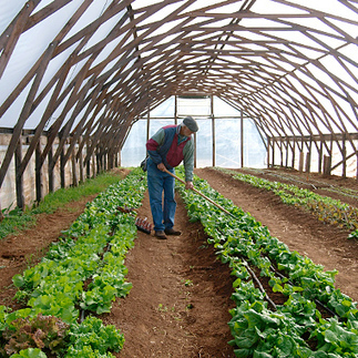 Incubator Farms Are Cultivating New Farmers: Organic Gardening | Organic Gardening in Colorado | Scoop.it