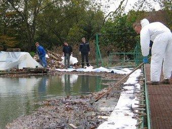 Pyralène dans les rivières : la pollution gagne du terrain ...   Contamination par PCB   Scoop.it
