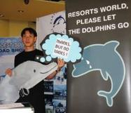 SINGAPORE GROUP CALLS ON THE PHILIPPINE GOVERNMENT TO RELEASE DOLPHINS CAUGHT FROM THE SOLOMON ISLANDS | Press Release | Earth Island Philippines Web Portal | Earth Island Institute Philippines | Scoop.it
