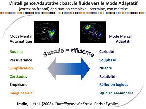 [Intelligence collective] Intelligence adaptative où comment passer en mode adaptatif pour réduire lestress | Fonctionnement du cerveau & états de conscience avancés | Scoop.it