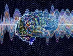 Our humming brains help us learn rapidly - health - 18 June 2014 - New Scientist | Neuroscience | Scoop.it