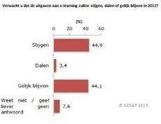 E-learning blijft groeien   NVO2 Nieuwsflits 16.04.2013   Scoop.it