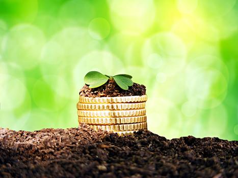 Start-up : les business angels ont été frileux dans leurs investissements en 2012 | Financer l'innovation | Scoop.it