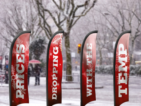 Let Your Feather Flag Fly - Even in Winter | Branding & Marketing for Businesses | Scoop.it