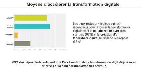Le réseau social : principal levier d'une culture de transformation numérique | Transformation digtale des entrepises | Scoop.it