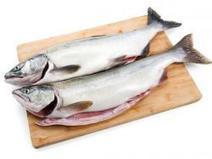 Study: Farm-Raised Salmon offers Lowest Overall Environmental Cost for Protein | Aquaculture Directory | Aquaculture Directory | Scoop.it