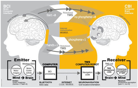 The First Successful Demonstration Of Brain-To-Brain Communication In Humans | Digital Information and Communication Literacy | Scoop.it
