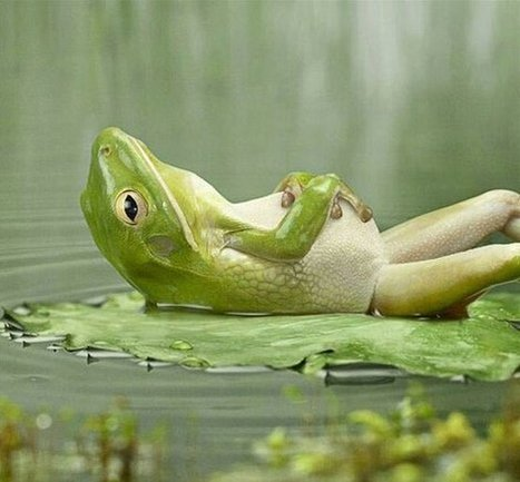 Twitter / Globe_Pics: Relaxation is the key to a ... | holistic stress management | Scoop.it