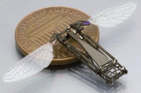 Pop-up robotic bee by Harvard students | Good Advice | Scoop.it