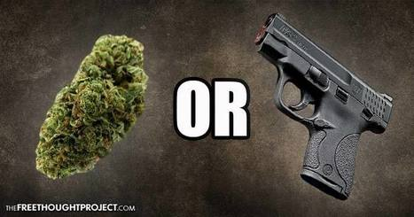 """Federal Court Rules Medical Cannabis Patients """"Do Not Have the Right to Buy a Gun"""" 