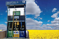 Study: Biofuels mandate could increase EU CO2 emissions | Política energética | Scoop.it