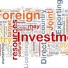 GDP Global: Investment Promotion Agencies, IPA, Foreign Direct Investment, FDI, Economic Development
