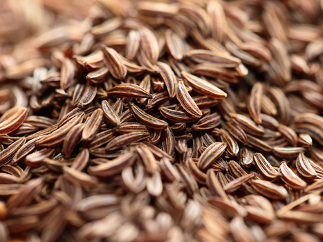 From Ancient Sumeria To Chipotle Tacos, Cumin Has Spiced Up The World - KQED (blog) | EL ESPAÑOL DE AMERICA | Scoop.it