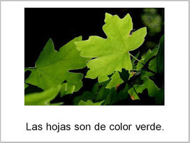 Las Hojas de Otoño--printable Spanish 'Fall Leaves' book and icons | Speech-Language Pathology | Scoop.it