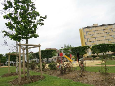 Les habitants invités à parrainer un arbre - Le Courrier des Yvelines | Chatou | Scoop.it