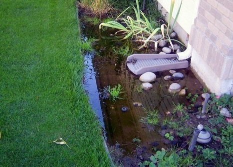 Check foundation before even stepping in the house - Premier Foundation Repair Inc. | Foundation repairs | Scoop.it