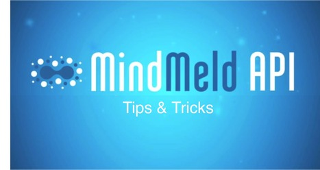 Tips & Tricks for Getting the Most out of the MindMeld API | The MindMeld API & the Future of Intelligent Interfaces | Scoop.it