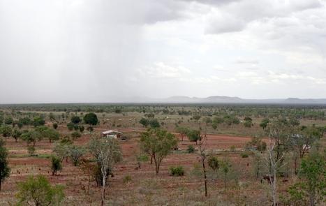 Elevated carbon dioxide making arid regions greener | Absurdity | Scoop.it