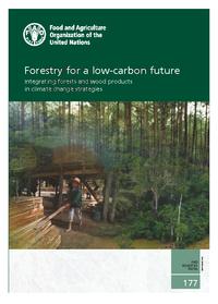 La forêt dans les stratégies de lutte contre le changement climatique | EntomoNews | Scoop.it