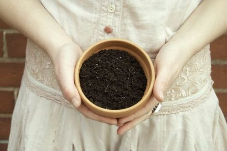 The 411 on DIY Organic Potting Soil for the Resilient Container Garden | Rainbow Organic | Scoop.it