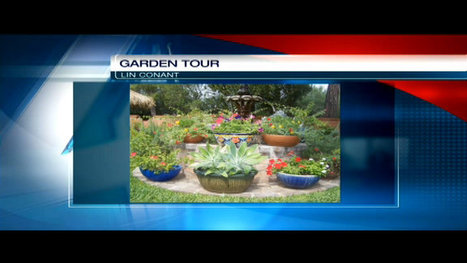 Master Gardener Tour: Annual tour next weekend | KVOA (TV-Channel 4 Tucson) | CALS in the News | Scoop.it
