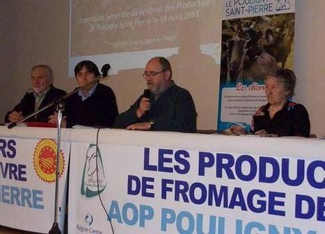 AOP pouligny-saint-pierre : hausse de la production | The Voice of Cheese | Scoop.it