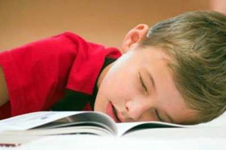 Propuestas para cambiar la Educación: no usar libros de texto   Las TIC y la Educación   Scoop.it
