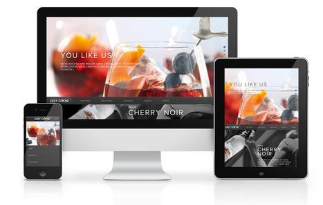 Website Design in Delhi-Website Design in India | saudagar | Scoop.it