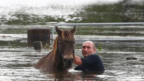 Major eastern Australian flood events showing 'significant' rise in frequency, researchers say | Lorraine's Environmental Change &  Management | Scoop.it