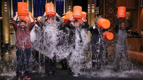 The ice bucket challenge has funded a huge breakthrough in ALS research | Business News & Finance | Scoop.it