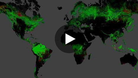 Une carte dévoile l'étendue de la déforestation dans le monde   Ressources pour le cours de Géographie   Scoop.it
