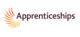 Online Apprenticeship applications and vacancies set new records - Apprenticeships | Careers Opportunities for you | Scoop.it