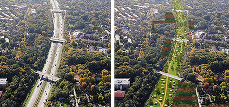 Hamburg sets out to become a car-free city in 20 years | Urban Research | Scoop.it