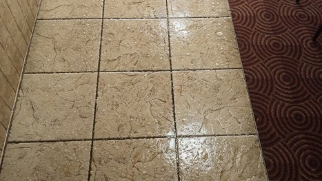 Commercial Cleaning  Newcastle   New castle Carpet and Tile Cleaning   Newcastle Carpet and Tile Cleaning   Scoop.it