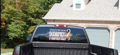 Window Film | Scorpion Window Films | Scoop.it