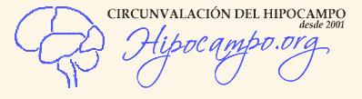 (ES) - Las Demencias   hipocampo.org   Glossarissimo!   Scoop.it