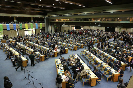 New UN high-level body on environment opens inaugural session in Nairobi | Wildlife Trafficking: Who Does it? Allows it? | Scoop.it