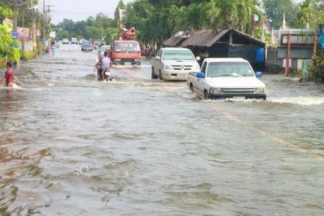 Victims of floods get counselling - The Nation   natural disaster   Scoop.it