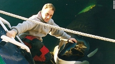 Orca trainer saw best of Keiko, worst of Tilikum | Why people should not be allowed to own exotic animals | Scoop.it