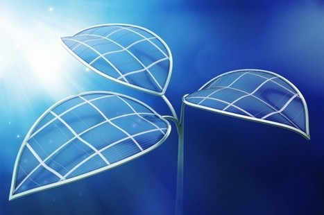 "This Artificial ""Leaf"" Can Produce Fuels From Carbon Dioxide And Sunlight 