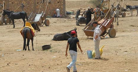 Le monde rural : parent pauvre des politiques publiques | Questions de développement ... | Scoop.it