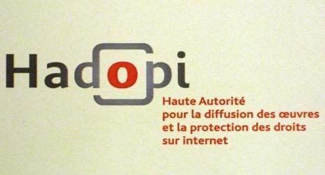 Fuites des données de TMG : un coup dur pour l'Hadopi - Les Inrocks | Sécurité informatique | Scoop.it