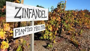 Reflecting on 20 Years of Zinfandels   Vitabella Wine Daily Gossip   Scoop.it