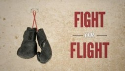 Survival Tactics: Understanding Your Fight-Or-Flight Response and How to Control It - Prepared For That | Keyser Self-Defense | Scoop.it