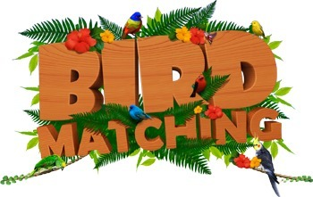 Bird Matching | iphone bird games | Scoop.it