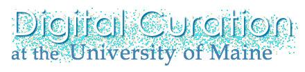 Still Water blog · Digital Curation syllabi now online | culturation heritage digita curator | Scoop.it