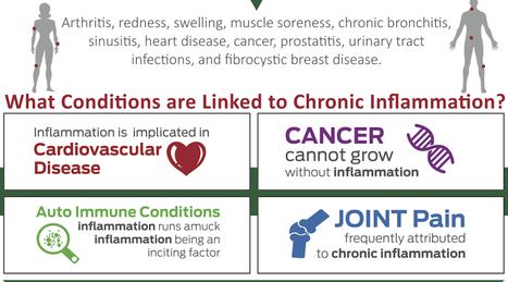Why Chronic Inflammation is really the Proven Cause of Illnesses? | DETOX-METABOLISM-IMMUNE MODULATION-PHYSIOLOGICAL AND COGNITIVE ENHANCEMENT | Scoop.it