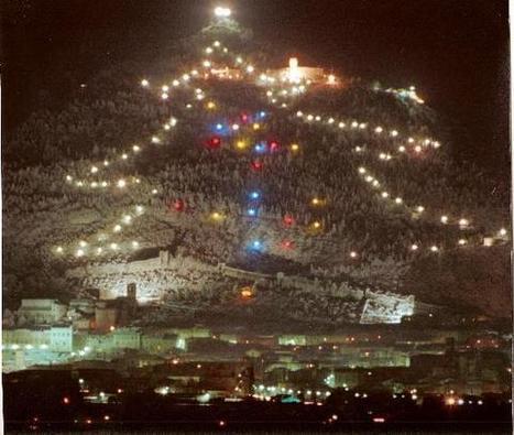 De grootste kerstboom ter wereld | UIT DE KRANTEN BY PATRICIA FAVETTA | Scoop.it